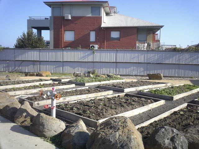生徒の手による water wise garden。水をあまり使わずに育てられるガーデンだとか。